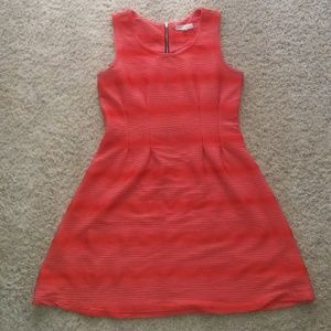Bisbee Textured Dress (New Without Tag)